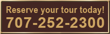 dynamic wine tours phone box text