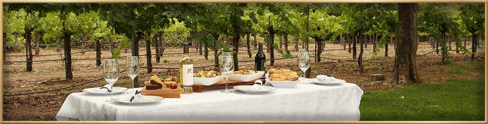 napa valley vineyard lunch