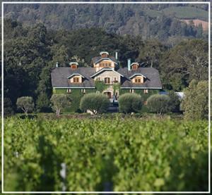 napa-valley-wineries-body