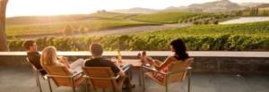 Enjoy view Cuvaison Napa Valley wine tour